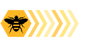 Buzy Bee Software Services for Professional adaptable custom made software.